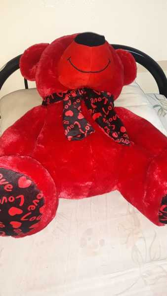Used Tedy bear in Dubai, UAE