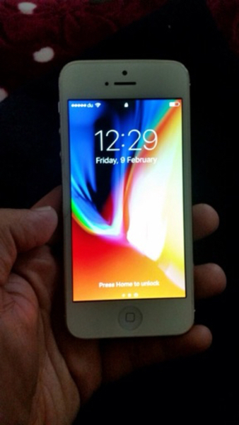 Used Iphone 5 gold in Dubai, UAE