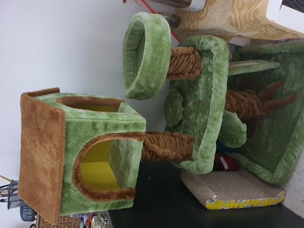 Used Cat tree house in Dubai, UAE