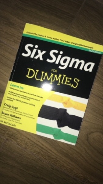 Used Six Sigma for dummies! in Dubai, UAE