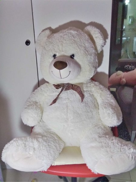 Used Teddy in Dubai, UAE