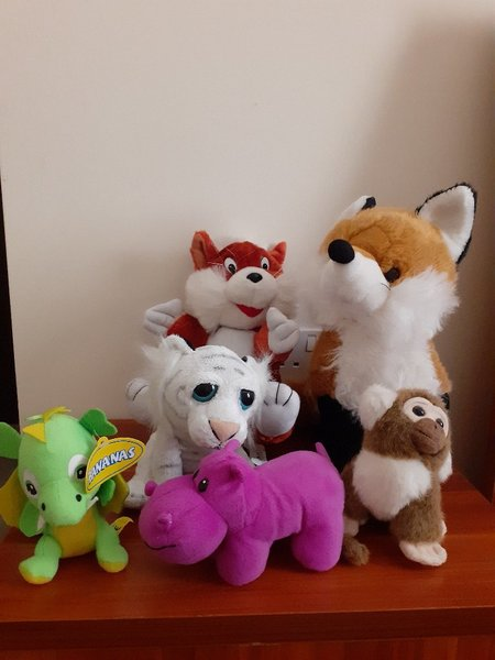 Used Stuffed toys in Dubai, UAE