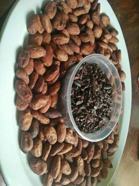 Used Cocoa Nibs in Dubai, UAE