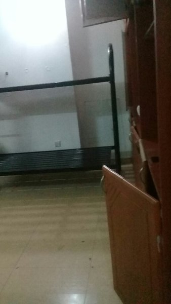 Used 5 Used Bunk bed for Sale in Dubai, UAE