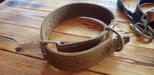 Used Dog collar pure leather in Dubai, UAE