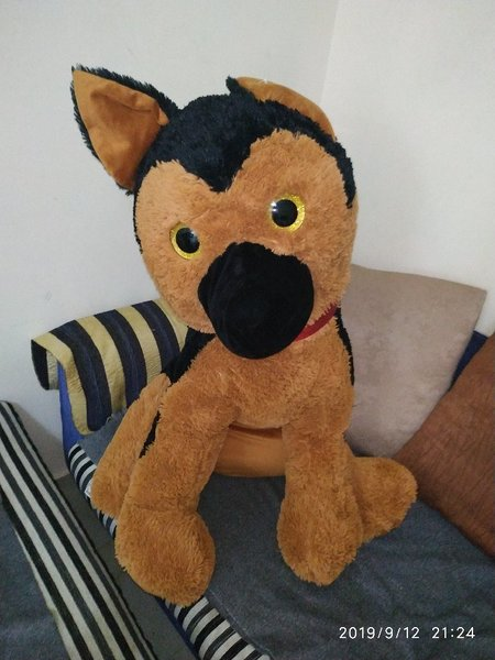 Used Fluffy Toy Dog in Dubai, UAE