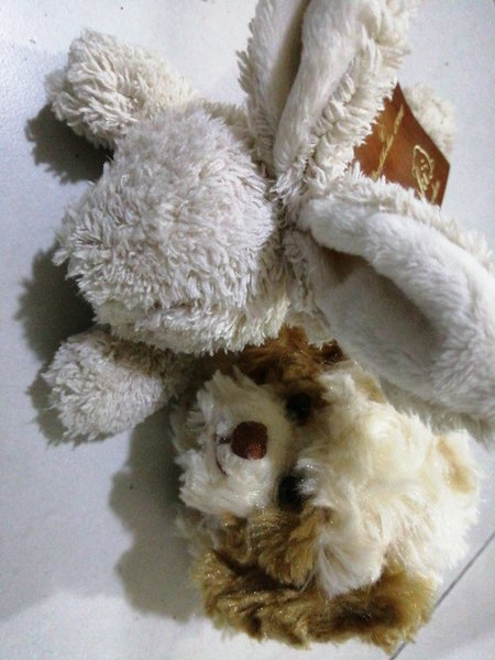 Used Teddy Bear - Cute little size in Dubai, UAE