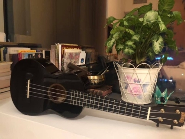 Used Ukulele in Dubai, UAE