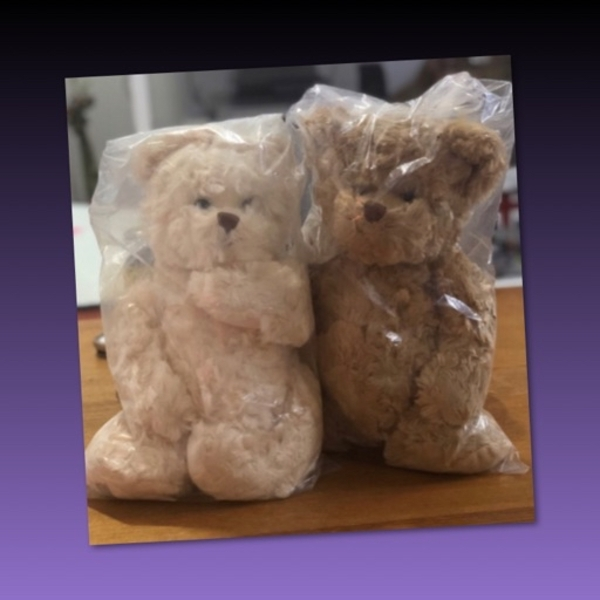 Used Ted & Florence Bukowski Teddy Bear in Dubai, UAE