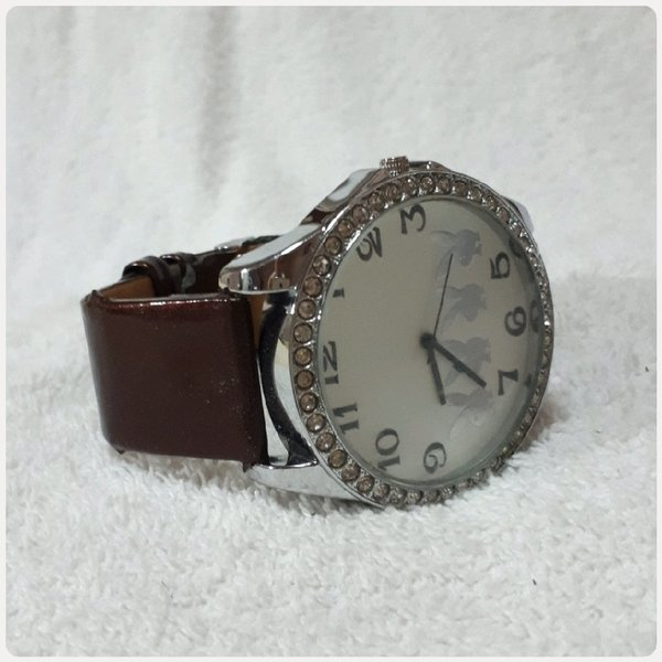Used Brown Pio's watch for her in Dubai, UAE