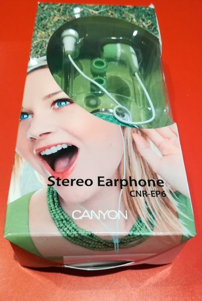 Stereo Earphone With Keychain Case