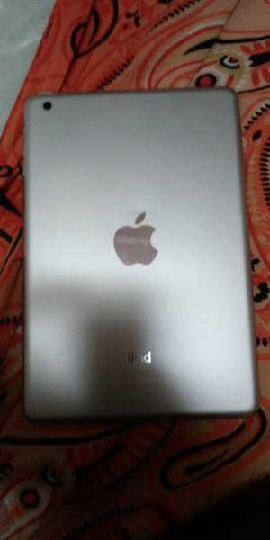 I pad mini wifi with flip cover and chag