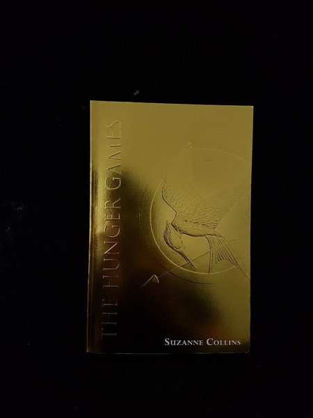 Used The Hunger Games (Book) in Dubai, UAE