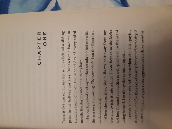 Used divergent by veronica roth in Dubai, UAE