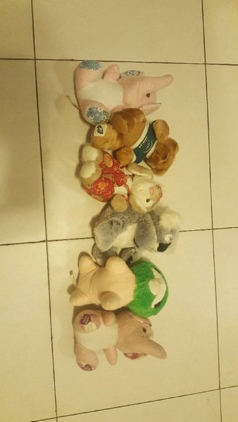 Used 6 pcs Medium teddies- THROW AWAY RATE!! in Dubai, UAE
