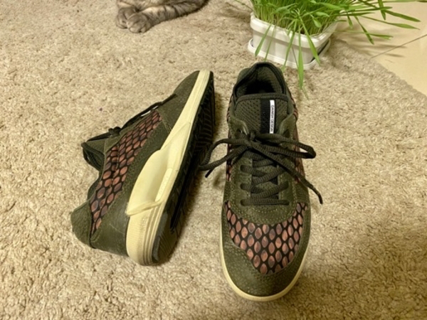 Used Women leather Trainers from Ecco 38 in Dubai, UAE