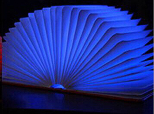 Used Led Book Chargable in Dubai, UAE