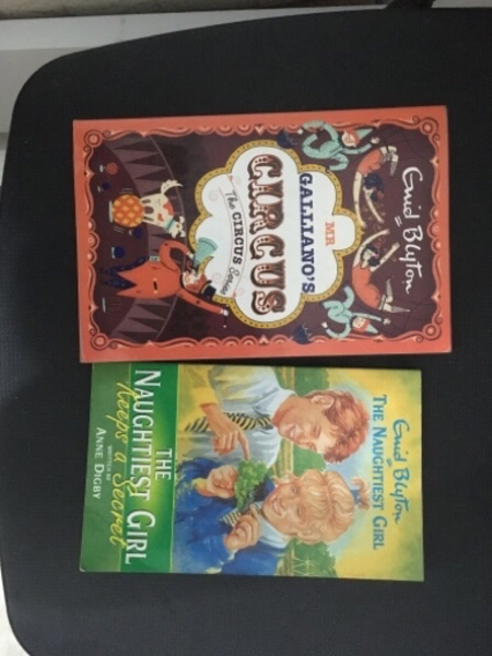 Used Two Enid Blyton Books for cheap in Dubai, UAE