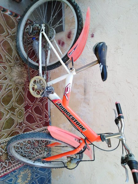 Used Bicycles in Dubai, UAE