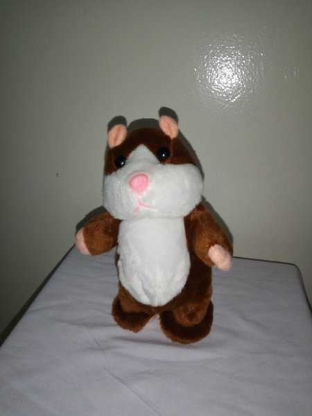 Used TALKING HAMSTER RECORDER in Dubai, UAE