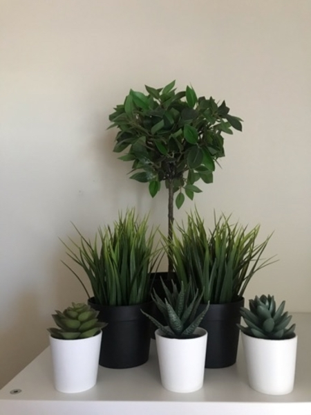 Used Artificial Potted Plants - Set of 6 in Dubai, UAE