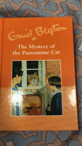 Used Enid blyton books in Dubai, UAE