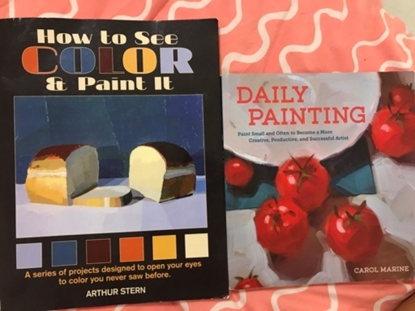 Used Painting books set of two in Dubai, UAE