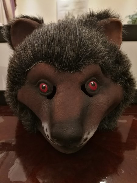 Used Bear Mask in Dubai, UAE
