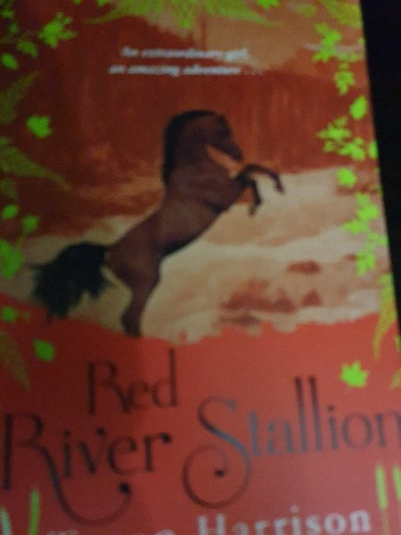 Used Books the horse road/red river stallion in Dubai, UAE