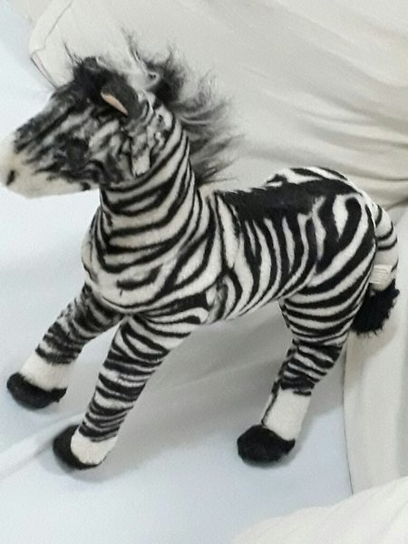 Used Baby zebra toy in Dubai, UAE