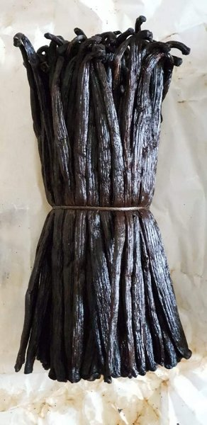 Used Vanilla Pods from Madagascar in Dubai, UAE
