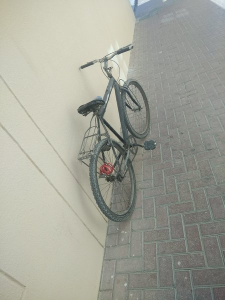 Used Classic Cycle Black in Dubai, UAE