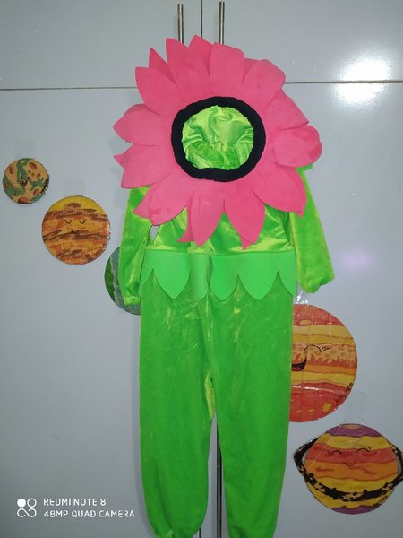 Used flower costume in Dubai, UAE