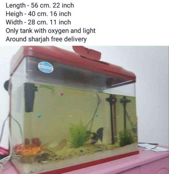 Used Aquarium  in Dubai, UAE