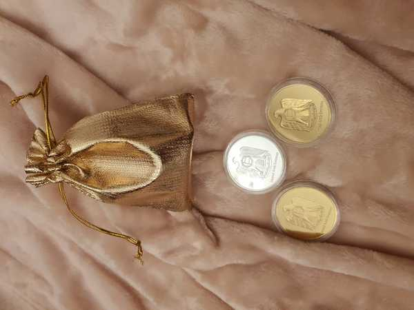 Used 3 coins in golden pouch & 1extrafreecoin in Dubai, UAE