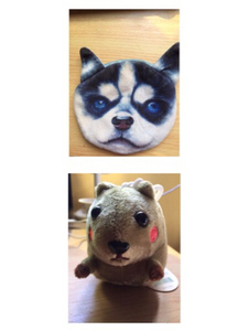 Used Cute Husky Coin Purse & Mumuso Toy in Dubai, UAE