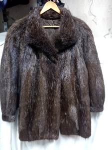 Used NUTRIA FUR COAT in Dubai, UAE